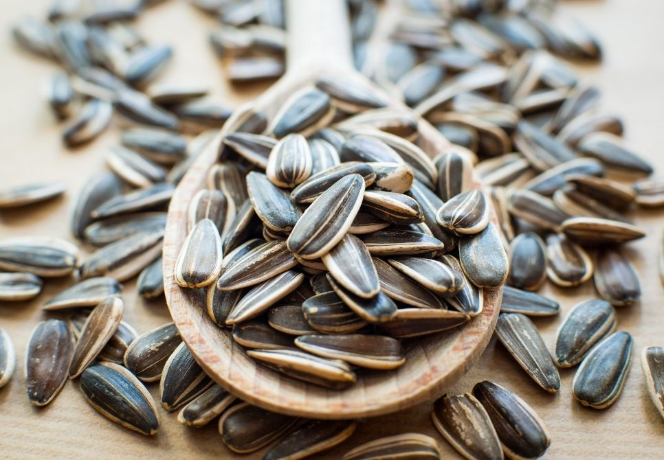 3 Amazing Benefits of Eating Sunflower Seeds Every Day